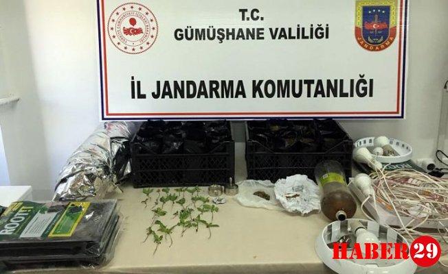 Gümüşhane'de Uyuşturucu Madde ve Kaçak Silah Operasyonu
