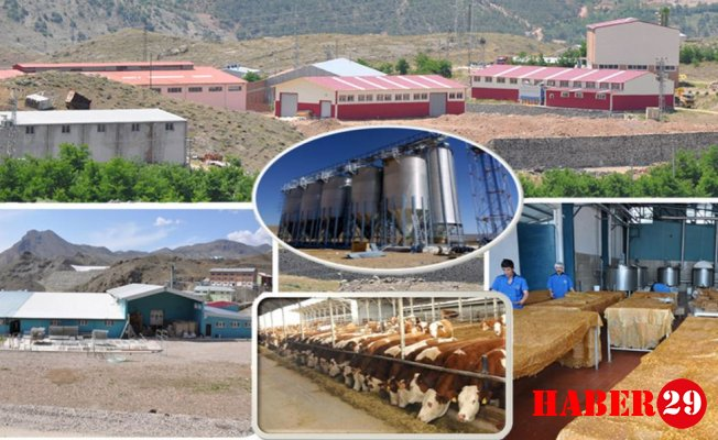 Kırsal Kalkınma Yatırımları ile Gümüşhane'ye 58 proje kazandırıldı.